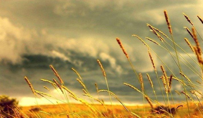 Nguyên nhân sinh ra gió, thủy triều và dòng biển