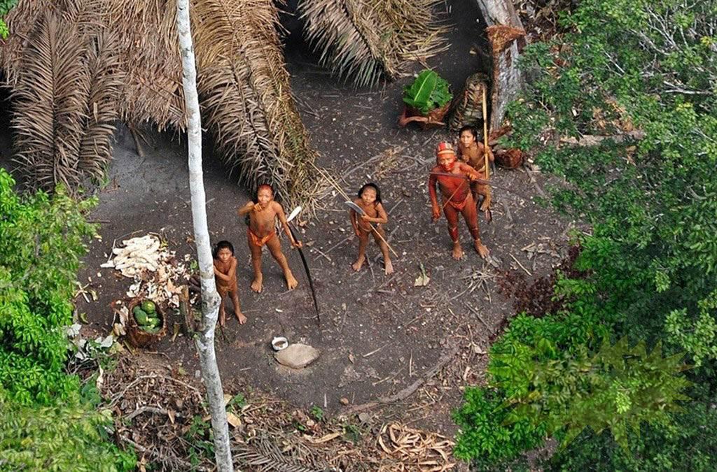 Những điều bí ẩn trong rừng Amazon khiến bạn hết hồn