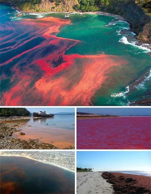 Những hiện tượng kỳ lạ trên đại dương