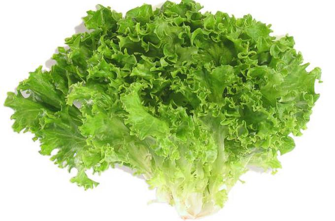 Những loại thực phẩm giàu vitamin K bạn cần biết
