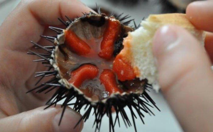 Những món ăn sống thoi thóp không dành cho người yếu tim