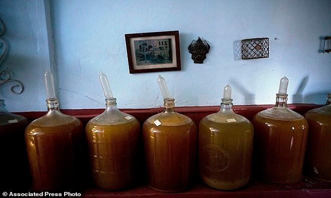 Nông dân Cuba dùng bao cao su để ngâm rượu trái cây