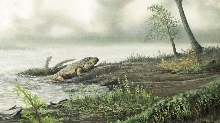 Ông tổ vi khuẩn kháng kháng sinh lên cạn 450 triệu năm trước