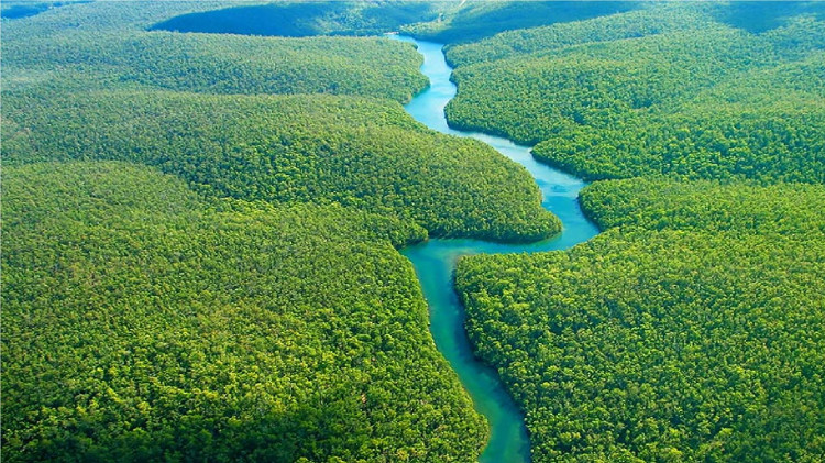 Phát hiện mới giúp sông Amazon trở thành sông dài nhất thế giới