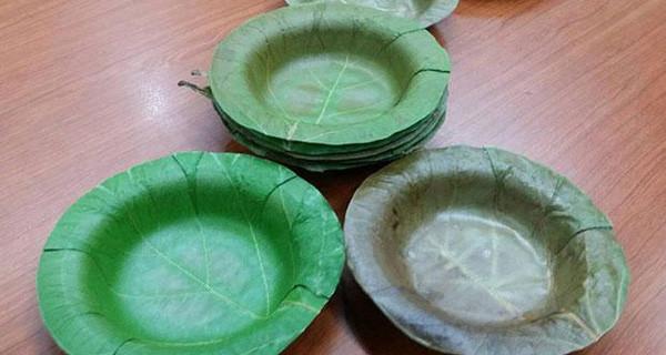 Phát minh ra bát làm từ lá cây, thay thế cho hộp đựng thức ăn bằng xốp độc hại