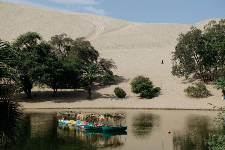 Phép lạ ở thị trấn nằm giữa sa mạc khô cằn nhất thế giới