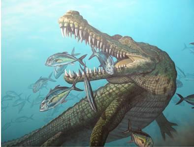Qua 6 triệu năm tiến hóa, nhan sắc cá sấu không hề thay đổi