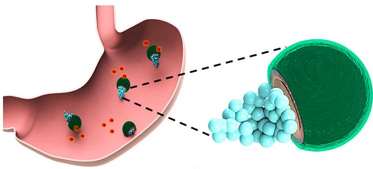 Robot bơi trong cơ thể trừ vi khuẩn