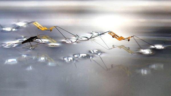 Robot có thể nhảy trên mặt nước