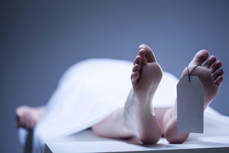 Sự sống vẫn tiếp diễn trong cơ thể 2 ngày sau khi chết