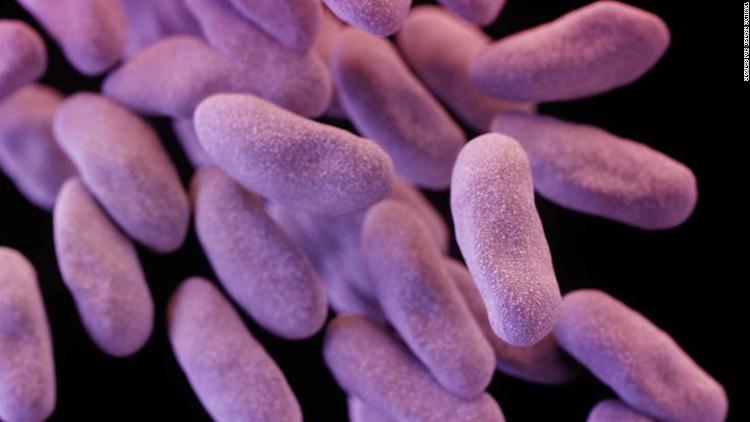 Sự thật đáng sợ về vi khuẩn kháng kháng sinh