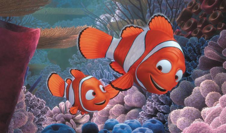 Sự thật về Finding Nemo: Cá bố Marlin sẽ chuyển giới ngay sau khi cá mẹ qua đời