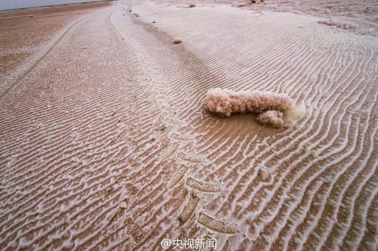 Sững sờ với vẻ đẹp ấn tượng của sa mạc hồng ở Trung Quốc