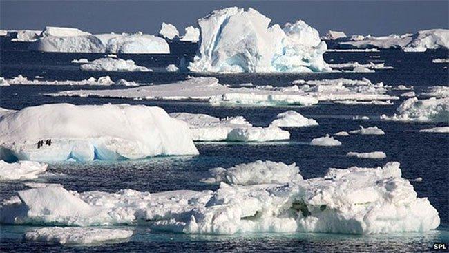 Tại sao băng Nam Cực tan chảy nhanh hơn dự kiến lại là một tin tốt?