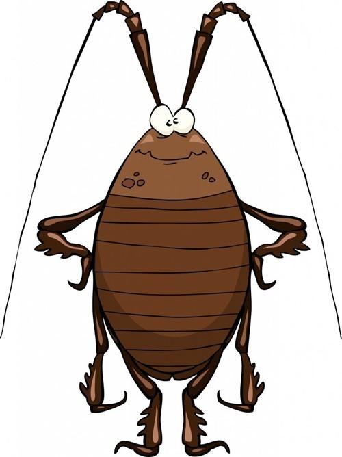Tại sao gián chịu được bức xạ nhưng lại bị thuốc diệt côn trùng tiêu diệt?