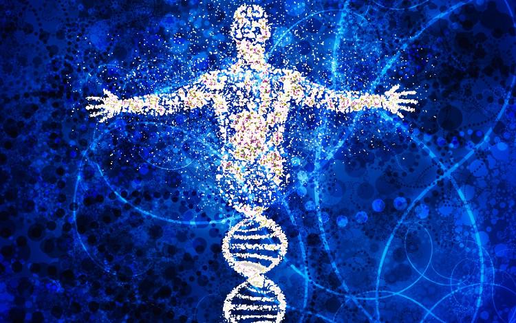 Tấm ảnh gif ấn tượng nhất lưu trữ trên vi khuẩn - loại ổ cứng mới của loài người