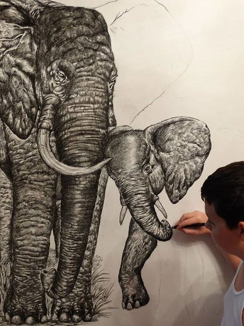 Thần đồng 15 tuổi gây kinh ngạc với tài vẽ động vật từ trí nhớ