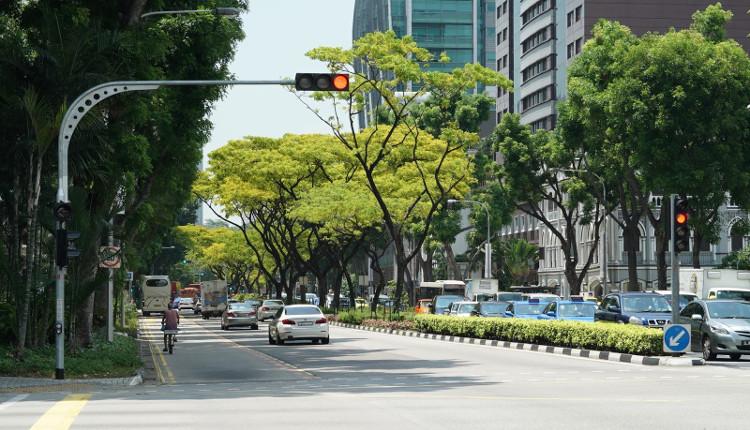 """Thủ tướng Lý Quang Diệu đưa Singapore thành """"quốc đảo xanh"""" thế nào?"""
