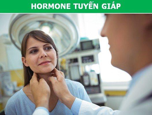 Tìm hiểu nhanh những loại hormone có thể là nguyên nhân khiến bạn bị béo phì!