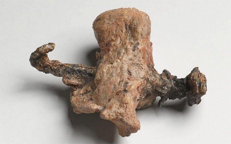 Tìm thấy bằng chứng mới cho thấy Chúa Jesus thật sự đã bị chết do bị đóng đinh