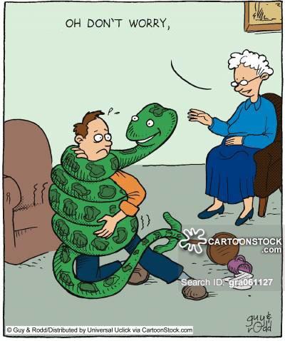 Tin vui cho những người sợ rắn: Chúng ta được tiến hóa để sợ rắn