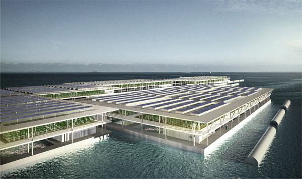 Trang trại nổi khổng lồ trồng rau bằng nước biển