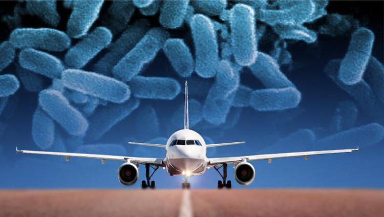 Từ chuyến du lịch, đã có nhiều người mang vi khuẩn kháng kháng sinh về nhà