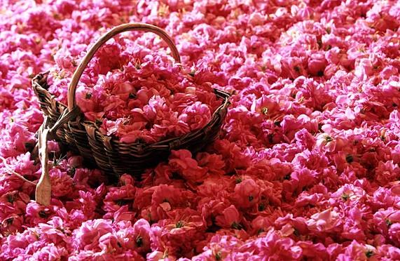 Vì sao Chanel No.5 là huyền thoại về nước hoa gần 100 năm?