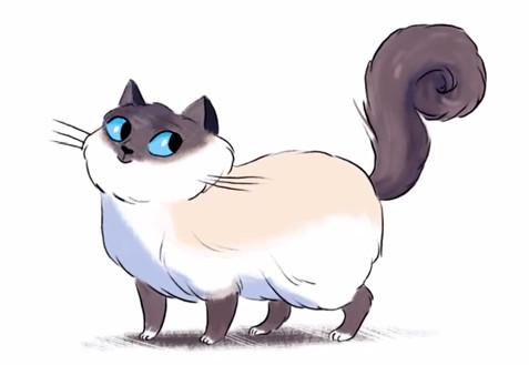 Video: Mèo cũng có ngôn ngữ riêng