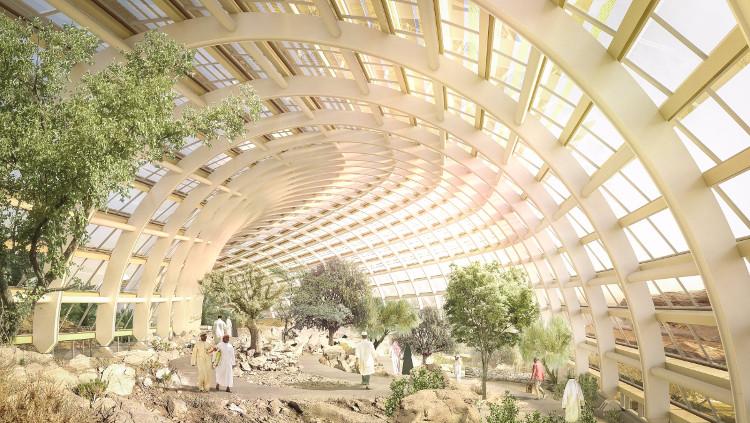 Vườn thực vật lớn nhất thế giới trên sa mạc Oman