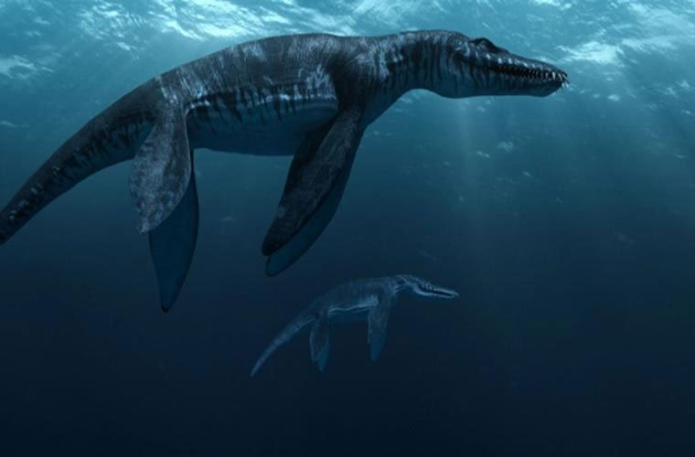 10 quái vật tiền sử gây kinh hoàng biển cả