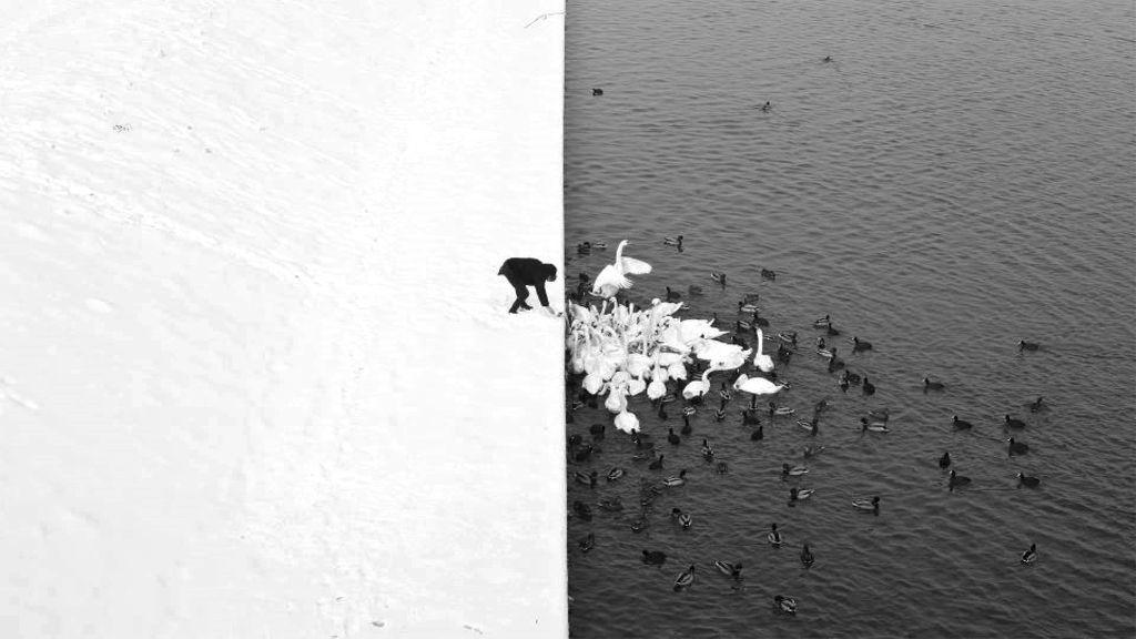 18 bức ảnh tự nhiên đẹp đến khó tin khiến người xem lầm tưởng là sản phẩm Photoshop