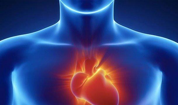 27 sự thật thú vị về trái tim của bạn