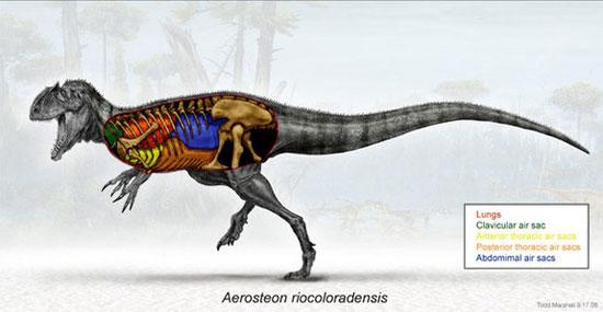 Ảnh dựng lại về các loài động vật tuyệt chủng