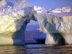 Băng tan, biển rộng và Bắc Cực lâm nguy