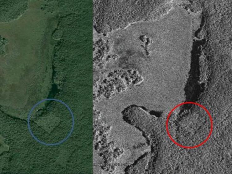 Cậu bé 15 tuổi tìm thấy thành phố cổ đại Maya trong rừng già