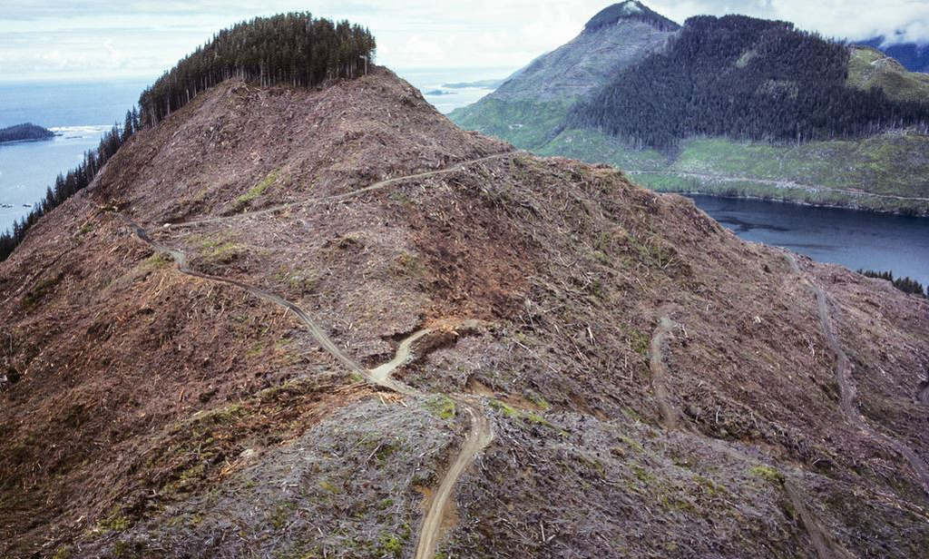 Chùm ảnh về sự hủy hoại môi trường khủng khiếp trên thế giới