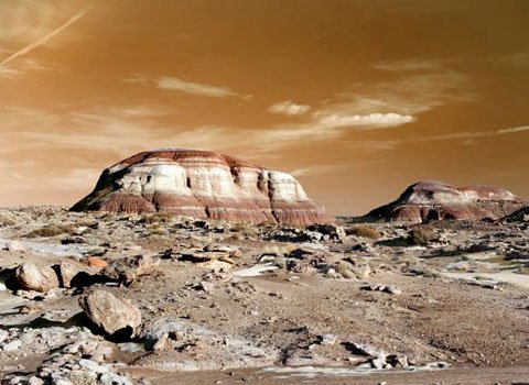 Chúng ta có thể lên sao Hỏa?
