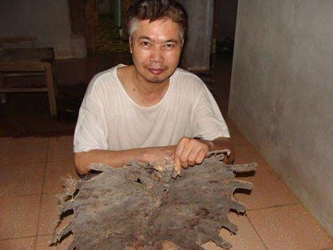 Chuyện chưa kể về bộ cốt rùa ở Yên Bái và Hòa Bình