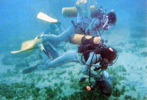 Cỏ biển đứng trước nguy cơ tuyệt chủng