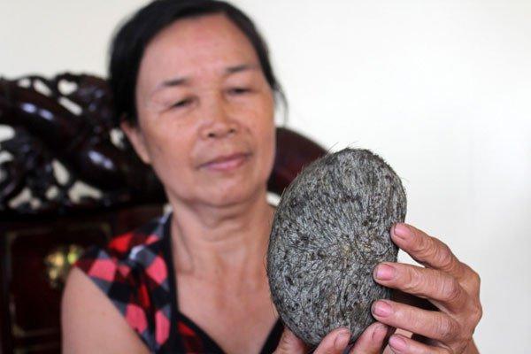 Có phải cát lợn là vị thuốc quý có giá hàng tỷ đồng?