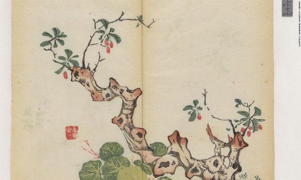 Cổ thư in màu vẹn nguyên kỳ lạ suốt 300 năm