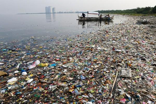 Con người đã tàn phá đại dương trong hàng chục năm qua như thế nào?