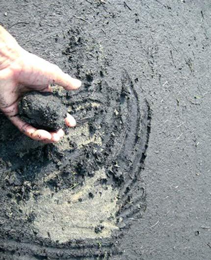 Con người đang nhuộm đen dần Trái đất