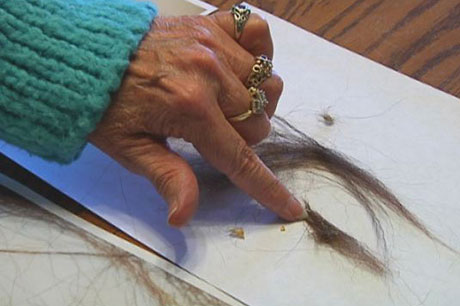 Công bố da và lông của dã nhân