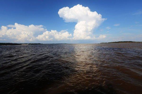 Đã tìm ra nguyên nhân sông Amazon thay dòng chảy