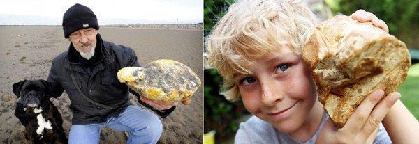 Đổi đời nhờ nhặt được chất thải của cá nhà táng trị giá 10.000 USD