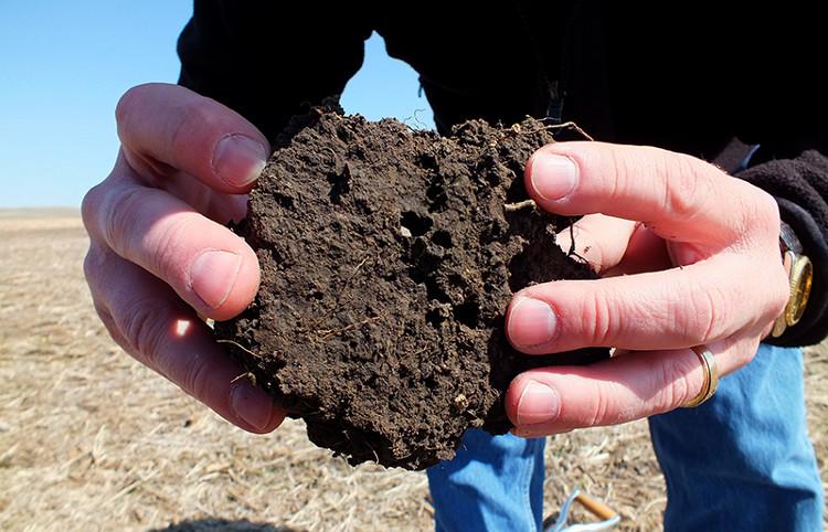 Dùng đất để giảm phát thải khí nhà kính