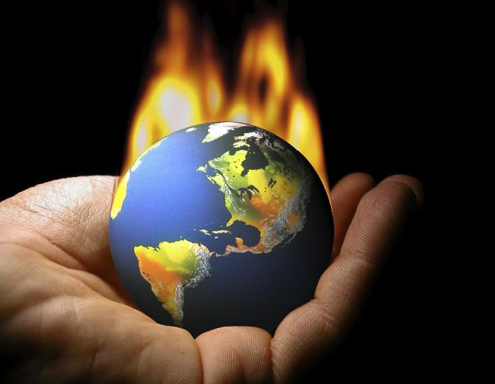 Giảm 70% lượng khí nhà kính chỉ bằng rong biển
