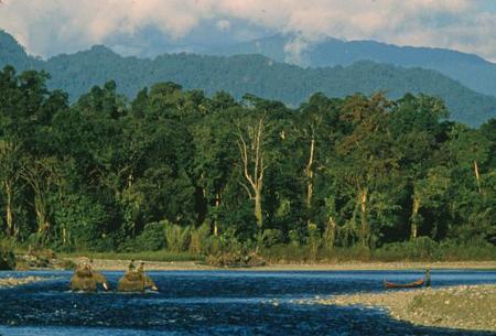 Khu bảo tồn hổ lớn nhất thế giới